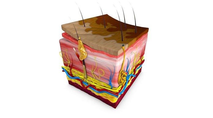 infezioni micropigmentazione